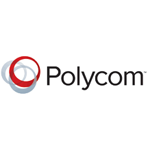 Michigan IT Services - Polycom